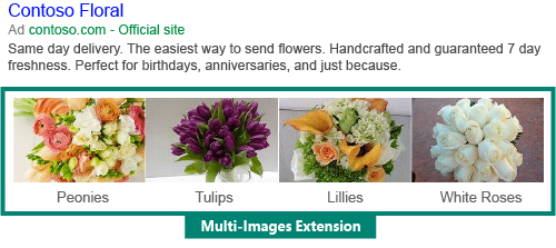 extension-image-bing